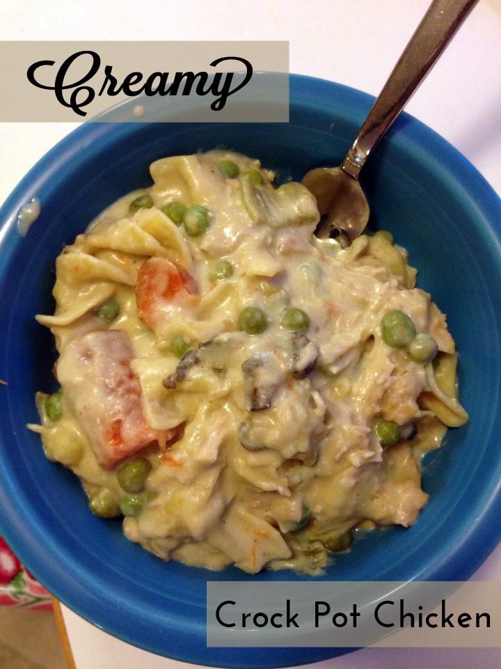 Creamy Crock Pot Chicken | Alaska Knit Nat
