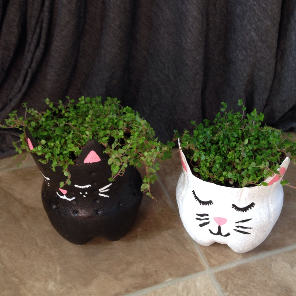 Quick craft soda bottle kitty planters alaska knit nat for Plastic bottle planter craft