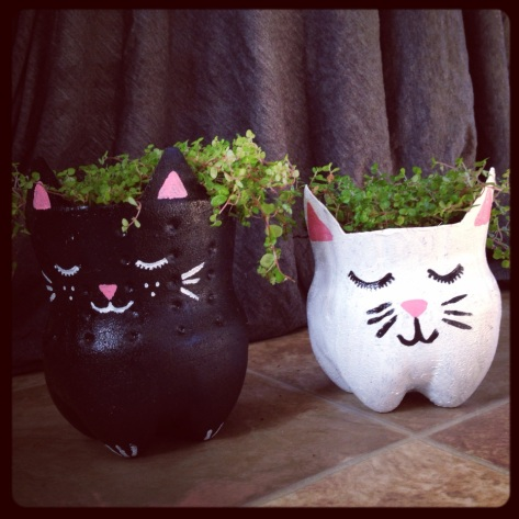 Quick craft: Recycled soda bottle kitty planters. Irresistibly cute from Alaska Knit Nat