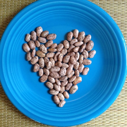How to cook perfect beans | Alaska Knit Nat