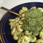 Harvesting Anchorage: Devil's Club Pesto | A free recipe from AlaskaKnitNat.com