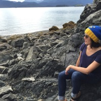 Alaska Flag Hat - A Free Pattern