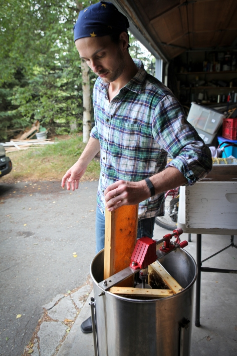 Harvesting Anchorage: Honey + Wildflower Tea | A profile of Ivan Night, Alaska beekeeper and mead maker