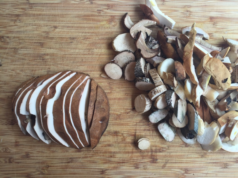 Wild porcini mushrooms, also called boletus, found in my yard in Anchorage, Alaska