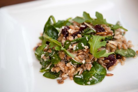 Farro and Arugula Salad with Feta and Cranberries