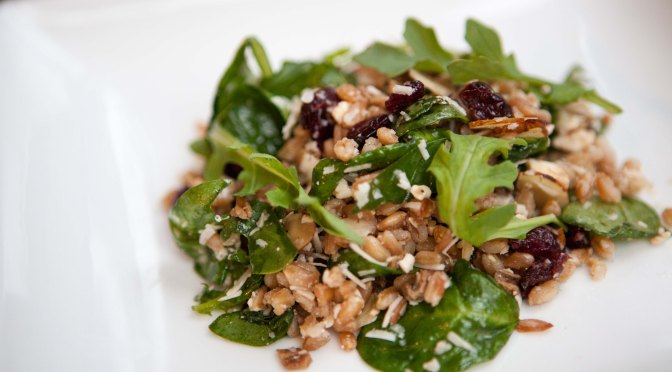 Farro and Arugula Salad with dried Cranberries